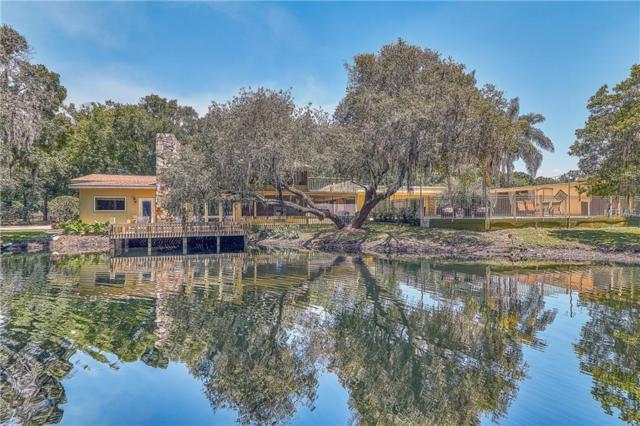 725 Ranch Road, Tarpon Springs, FL 34688 (MLS #U8044761) :: Jeff Borham & Associates at Keller Williams Realty