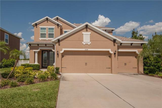 7374 Sugar Brook Place, Wesley Chapel, FL 33545 (MLS #U8044784) :: Jeff Borham & Associates at Keller Williams Realty
