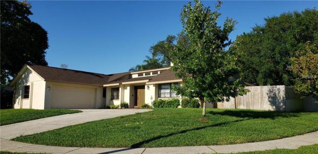 3901 Erne Street, Palm Harbor, FL 34683 (MLS #U8044812) :: Burwell Real Estate