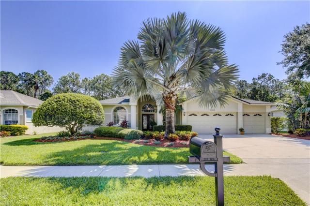 2303 Warwick Drive, Oldsmar, FL 34677 (MLS #U8044835) :: Paolini Properties Group