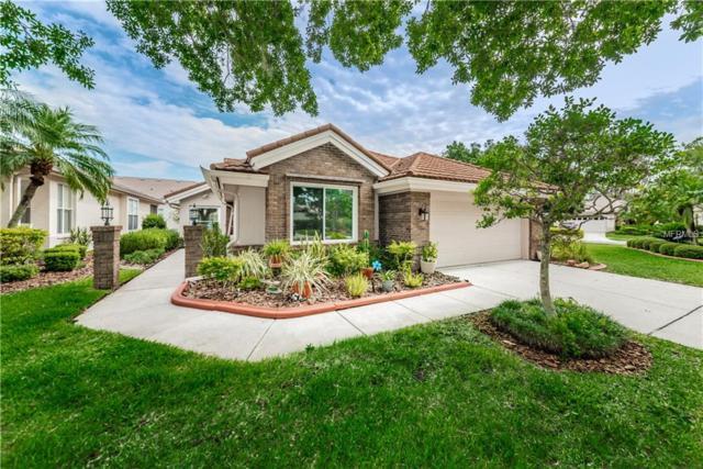 4815 Edge Park Drive, Oldsmar, FL 34677 (MLS #U8044923) :: Advanta Realty