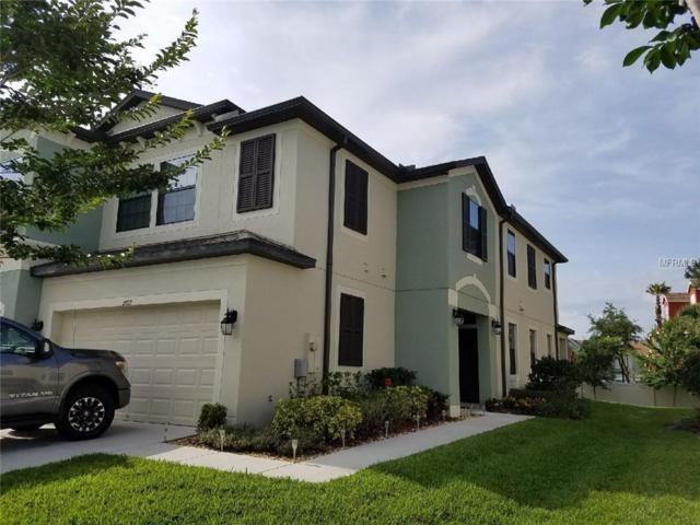 11712 Crowned Sparrow Lane, Tampa, FL 33626 (MLS #U8044996) :: Griffin Group
