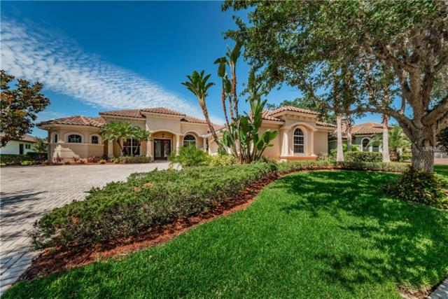 10223 Pontofino Circle, Trinity, FL 34655 (MLS #U8045120) :: Team Bohannon Keller Williams, Tampa Properties