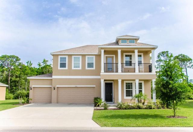 3256 Gina Court, Holiday, FL 34691 (MLS #U8045235) :: Griffin Group