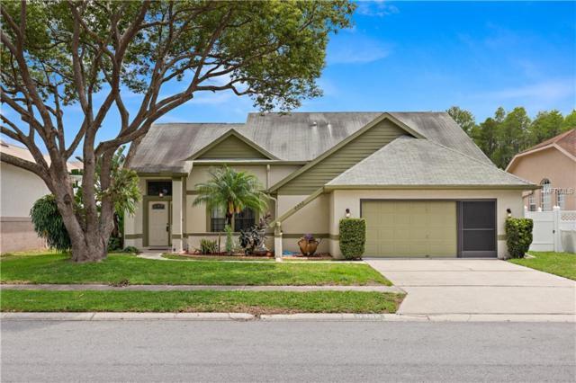 5352 Casa Nueva Drive, New Port Richey, FL 34655 (MLS #U8045269) :: The Duncan Duo Team