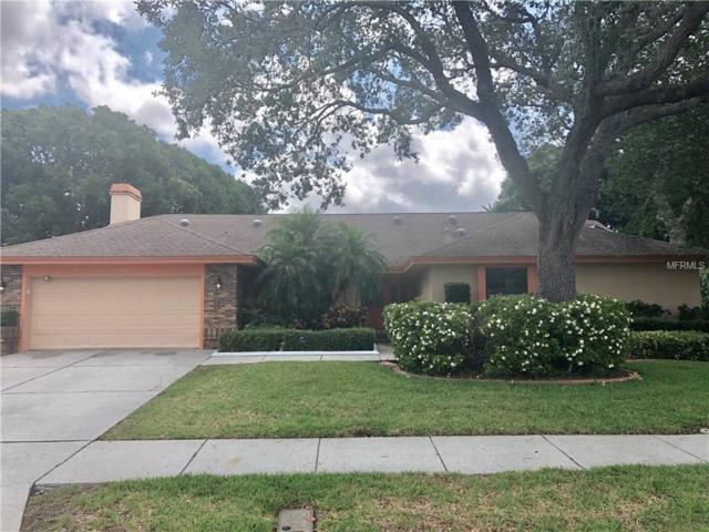 2879 Deer Hound Way, Palm Harbor, FL 34683 (MLS #U8045320) :: Premium Properties Real Estate Services