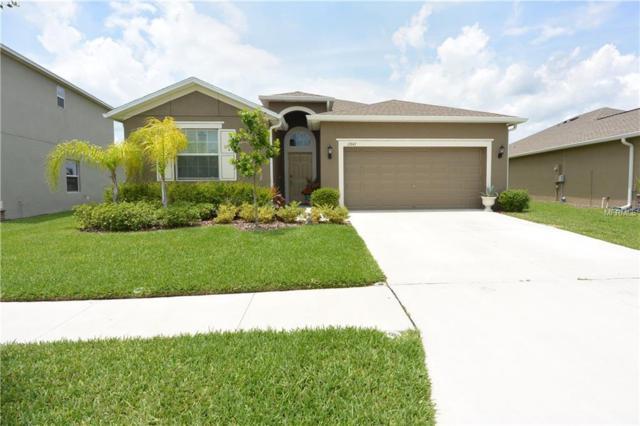 13947 Tensaw Drive, Hudson, FL 34669 (MLS #U8045442) :: Cartwright Realty