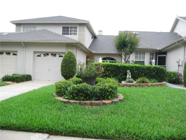 2572 W Brook Lane, Clearwater, FL 33761 (MLS #U8045482) :: Lock & Key Realty