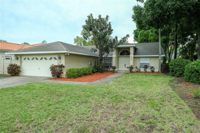 56 Citrus Drive, Palm Harbor, FL 34684 (MLS #U8045615) :: The Duncan Duo Team