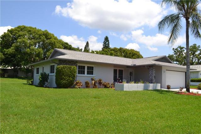 2870 Doone Circle, Palm Harbor, FL 34684 (MLS #U8045623) :: The Duncan Duo Team