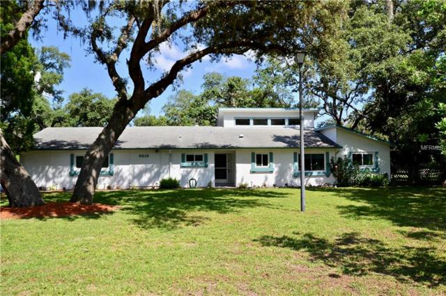 9515 Lakeview Drive, New Port Richey, FL 34654 (MLS #U8045655) :: The Duncan Duo Team