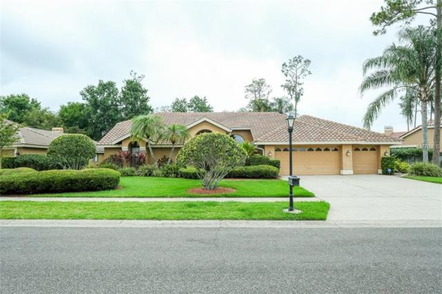 5042 Camberley Lane, Oldsmar, FL 34677 (MLS #U8045755) :: Medway Realty
