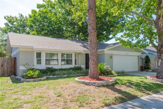 1924 Seton Drive, Clearwater, FL 33763 (MLS #U8045840) :: Griffin Group