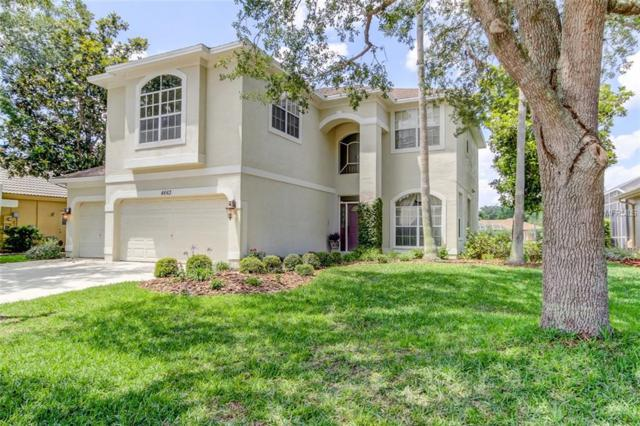 4663 Ayron Terrace, Palm Harbor, FL 34685 (MLS #U8045857) :: Team Suzy Kolaz