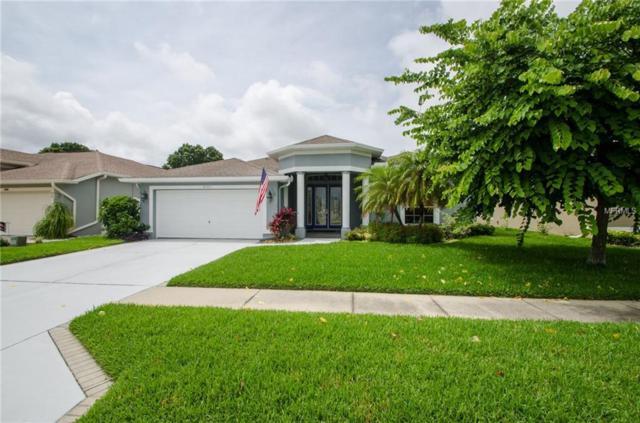 8192 Wild Oaks Way, Largo, FL 33773 (MLS #U8045859) :: Charles Rutenberg Realty