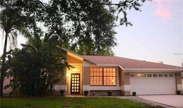 911 Brittany Park Boulevard, Tarpon Springs, FL 34689 (MLS #U8045892) :: Team Bohannon Keller Williams, Tampa Properties