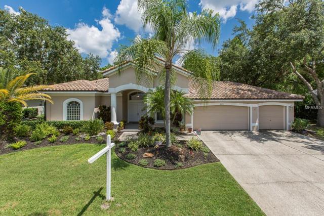 3879 Brooksworth Avenue, Tarpon Springs, FL 34688 (MLS #U8045977) :: The Duncan Duo Team
