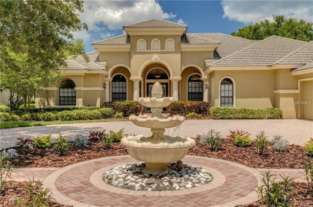 1365 Playmoor Drive, Palm Harbor, FL 34683 (MLS #U8045990) :: Delgado Home Team at Keller Williams