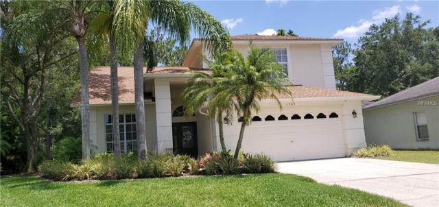 1783 Bayhill Drive, Oldsmar, FL 34677 (MLS #U8046028) :: Paolini Properties Group