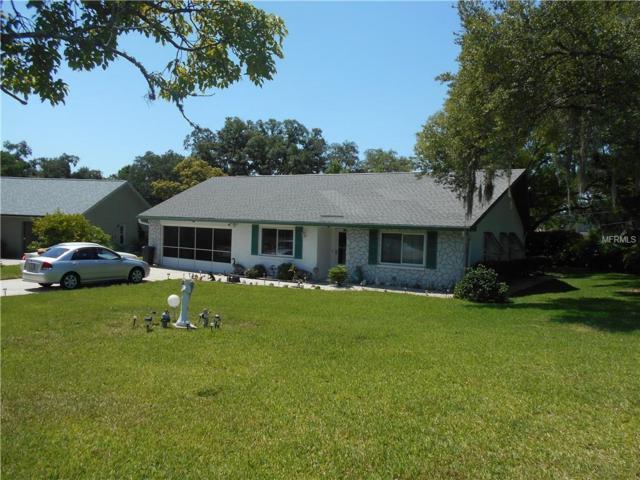 3372 Brodie Way, Palm Harbor, FL 34684 (MLS #U8046077) :: Paolini Properties Group