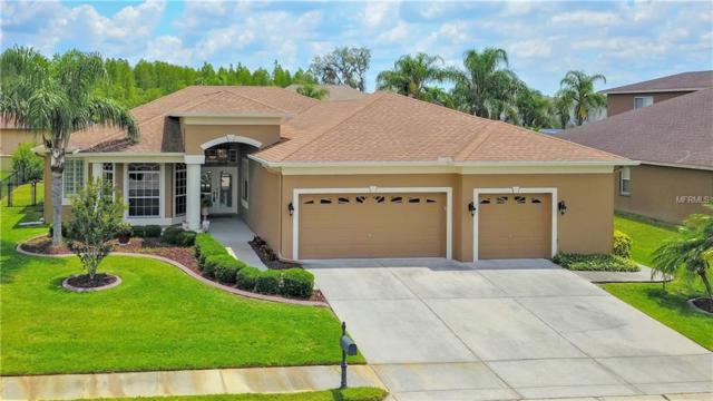 2142 Flameflower Court, Trinity, FL 34655 (MLS #U8046100) :: Lock & Key Realty