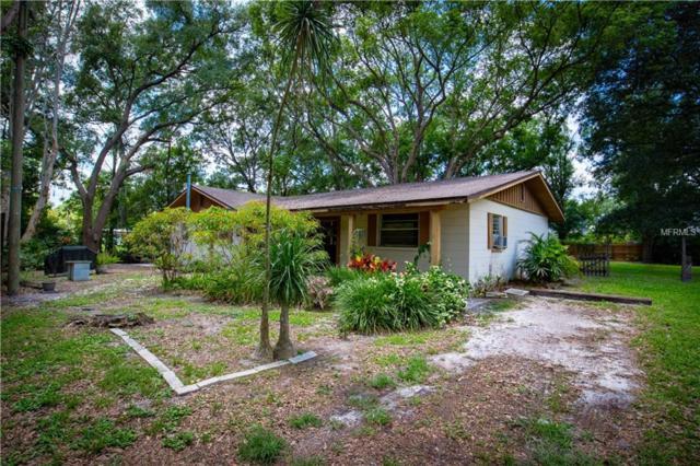 16212 Dew Drop Lane, Tampa, FL 33625 (MLS #U8046102) :: Team TLC | Mihara & Associates