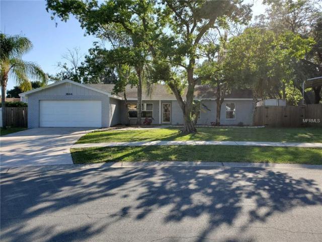 3844 Highgate Drive, Valrico, FL 33594 (MLS #U8046139) :: Godwin Realty Group