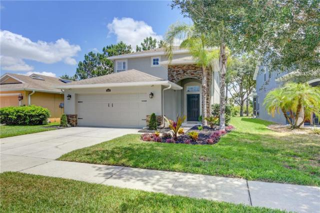 21315 Morning Mist Way, Land O Lakes, FL 34637 (MLS #U8046176) :: The Duncan Duo Team