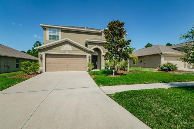 18331 Waydale Loop, Hudson, FL 34667 (MLS #U8046183) :: Lock & Key Realty