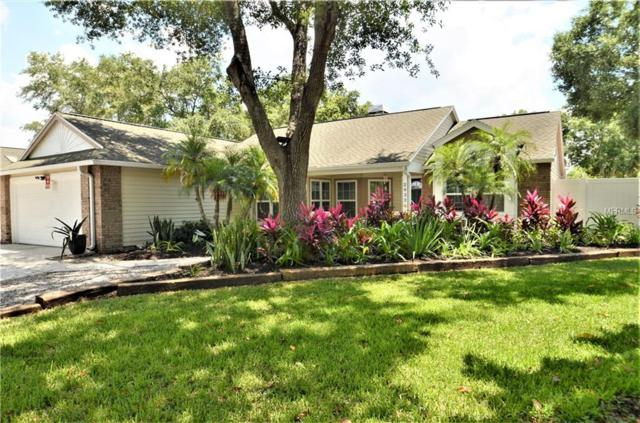 2032 Diane Avenue, Palm Harbor, FL 34683 (MLS #U8046201) :: Delgado Home Team at Keller Williams