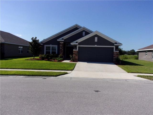 13255 Niti Drive, Hudson, FL 34669 (MLS #U8046208) :: Bustamante Real Estate