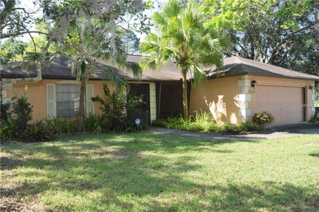 28400 Tanglewood Drive, Wesley Chapel, FL 33543 (MLS #U8046209) :: Team Bohannon Keller Williams, Tampa Properties
