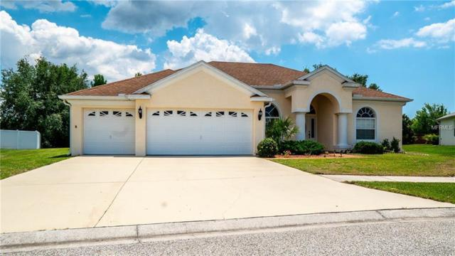 14529 Beauly Circle, Hudson, FL 34667 (MLS #U8046223) :: Team Suzy Kolaz