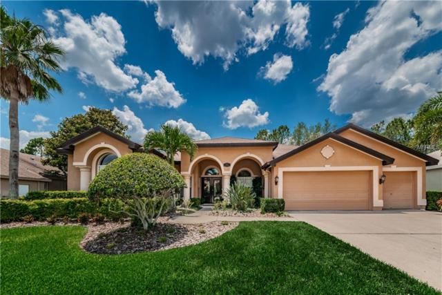 4474 Rockwood, Palm Harbor, FL 34685 (MLS #U8046232) :: Team Bohannon Keller Williams, Tampa Properties