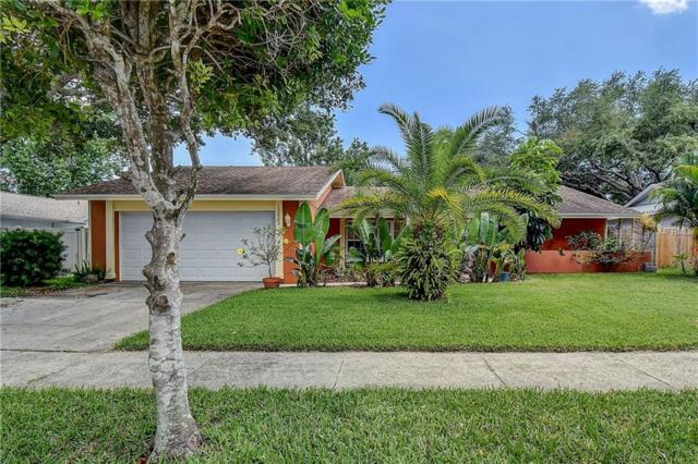 12982 93RD Avenue, Seminole, FL 33776 (MLS #U8046261) :: Lovitch Realty Group, LLC