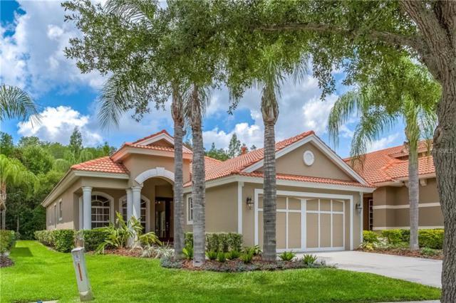 14638 Mirasol Manor Court, Tampa, FL 33626 (MLS #U8046262) :: Andrew Cherry & Company