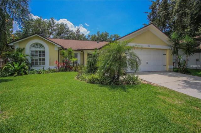 3042 Cara Court, Palm Harbor, FL 34684 (MLS #U8046267) :: Delgado Home Team at Keller Williams