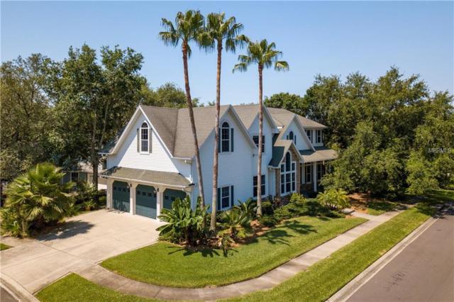 295 Florida Boulevard, Crystal Beach, FL 34681 (MLS #U8046278) :: Lovitch Realty Group, LLC