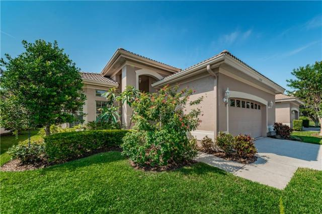 4383 Live Oak Boulevard, Palm Harbor, FL 34685 (MLS #U8046286) :: Delgado Home Team at Keller Williams