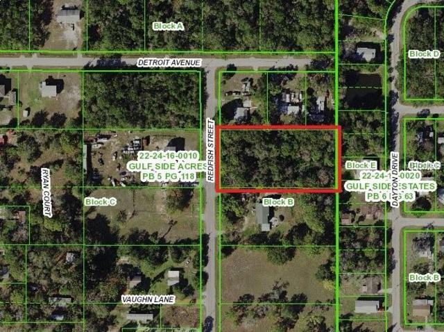 15118 Redfish Street, Hudson, FL 34667 (MLS #U8046298) :: Florida Real Estate Sellers at Keller Williams Realty