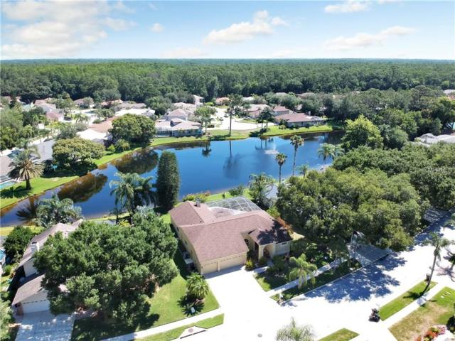 4163 Ridgemoor Drive N, Palm Harbor, FL 34685 (MLS #U8046334) :: Mark and Joni Coulter | Better Homes and Gardens