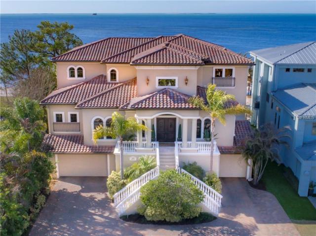 515 N Mayo Street, Crystal Beach, FL 34681 (MLS #U8046351) :: Zarghami Group