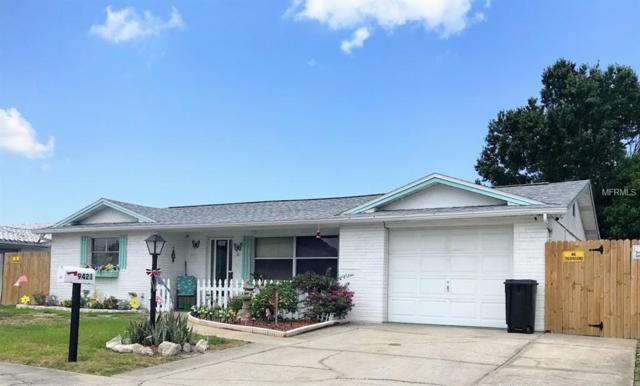 9421 Saint Regis Lane, Port Richey, FL 34668 (MLS #U8046505) :: Cartwright Realty