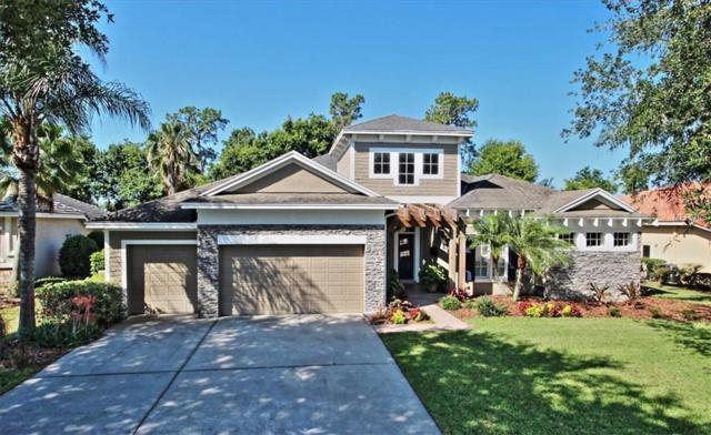 7049 Timber Ridge Way, Land O Lakes, FL 34637 (MLS #U8046514) :: The Duncan Duo Team