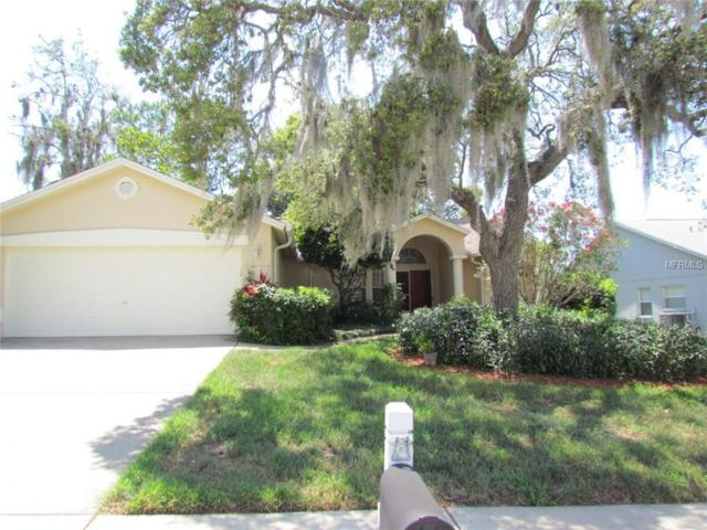 13741 Lanier Court, Hudson, FL 34667 (MLS #U8046533) :: Premium Properties Real Estate Services