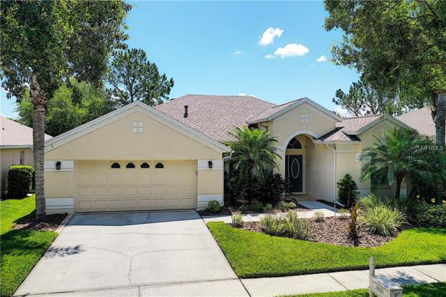 18133 Heron Walk Drive, Tampa, FL 33647 (MLS #U8046535) :: Team Bohannon Keller Williams, Tampa Properties