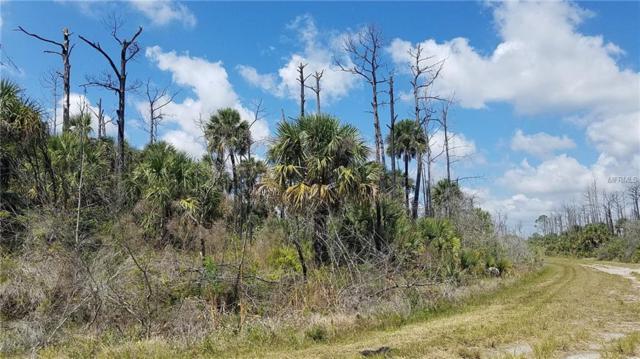 Newman Drive, North Port, FL 34288 (MLS #U8046538) :: Dalton Wade Real Estate Group