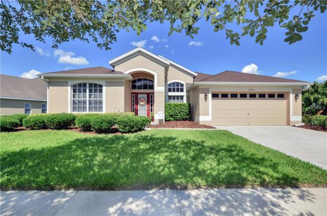 16523 Bridgewalk Drive, Lithia, FL 33547 (MLS #U8046553) :: The Duncan Duo Team