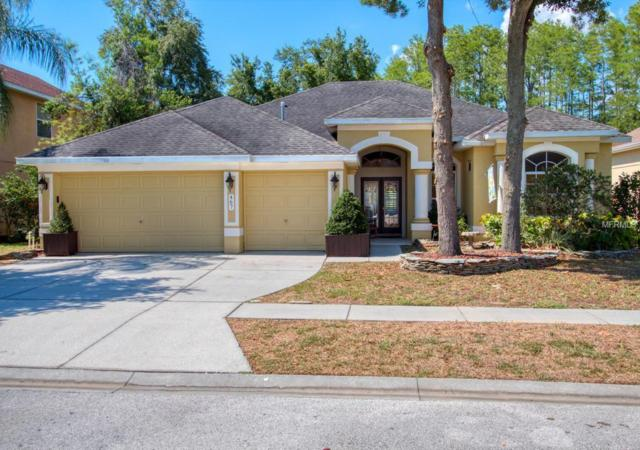 467 Denise Street, Tarpon Springs, FL 34689 (MLS #U8046581) :: The Duncan Duo Team