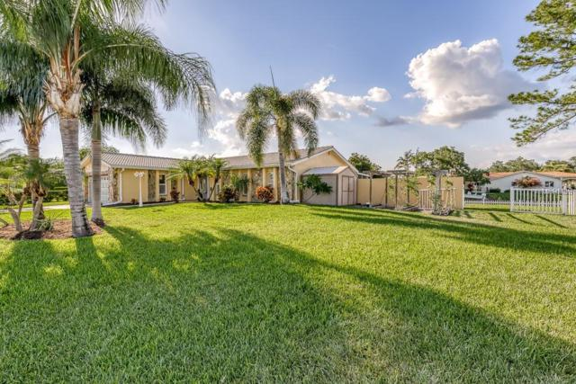 1479 47TH Avenue NE, St Petersburg, FL 33703 (MLS #U8046611) :: Keller Williams On The Water Sarasota